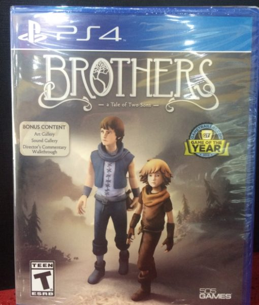 PS4 Brothers Tale of Two Sons game