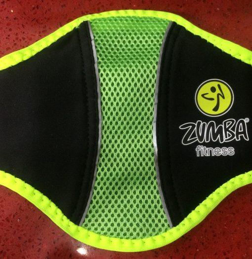 Wii Zumba belt
