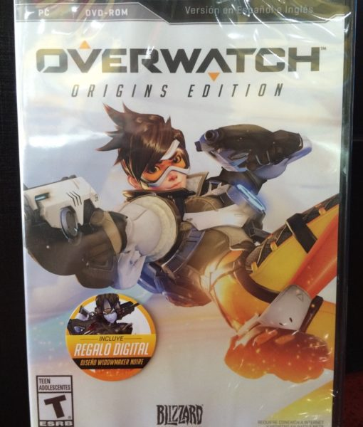 PC Overwatch game